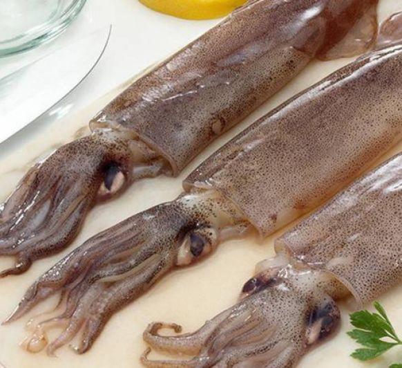 Arroz negro cremoso con calamares (Barceloneta)