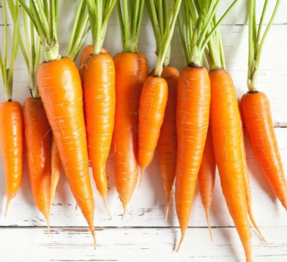 Ternera guisada con zanahorias