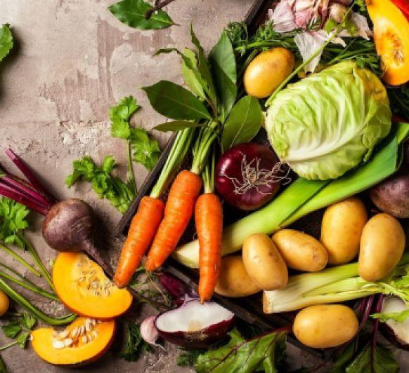 Sopa juliana con verduras frescas (la tetería)
