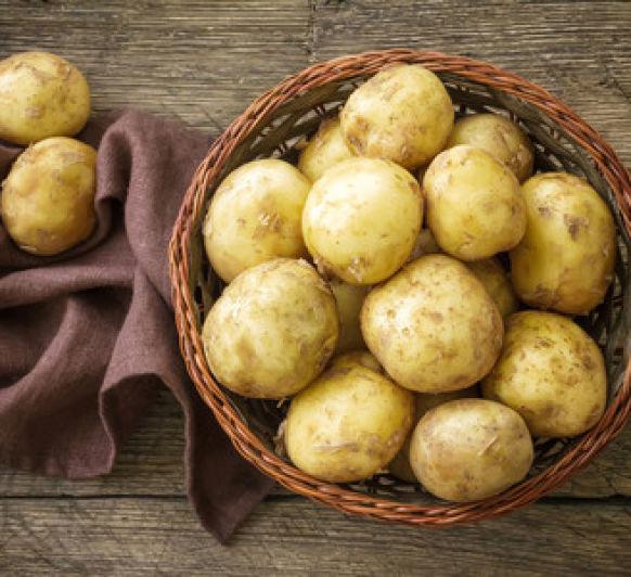 Patatas gratinadas al estilo de Saboya (Tartiflette savoyarde) (Taller de dibujo)