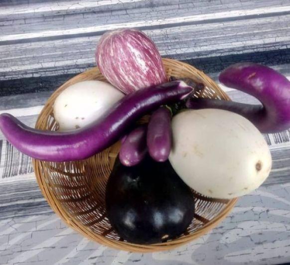 Berenjenas rellenas con alubias y tomates (Observando tórtolas)